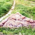 Живой камень Орловской области